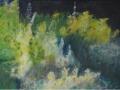 ines-tuin-2006-100-x-70-cm
