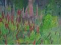 301-meijetuin-2-2006-60-x-80-cm