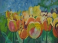 tulpen-2014-40-x-50-cm